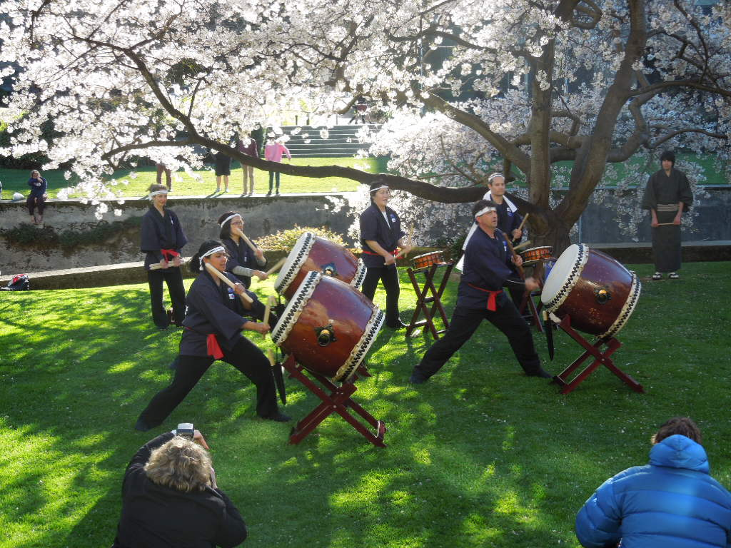 Hanami celebration outside the Clocktower